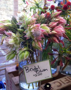 This flower was so pretty with the proteas and sedum - and the name, well, perfect.