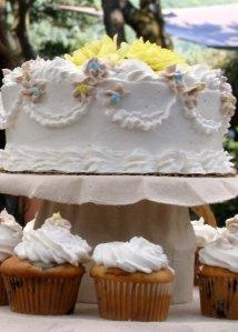 More cake shots