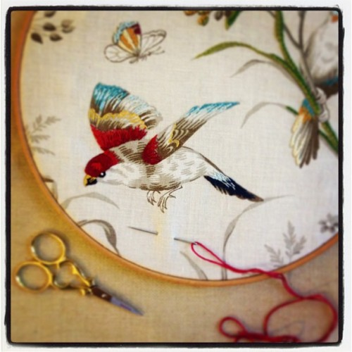French General Toile Fabric - Embroidery Workshop in Beacon Oct 2, 2013